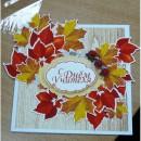 Заготовки для открыток, блокнотов, конверты